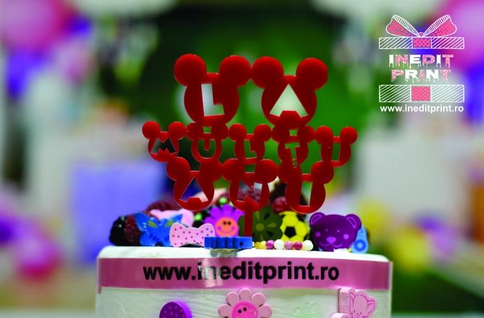 Topper Tort TC133 (Set10) 3